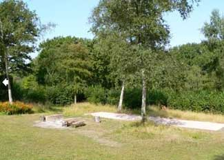Pines Naturist Club Forest of Dean