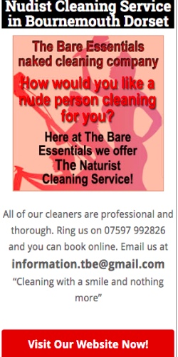 Bare essentials cleaning service